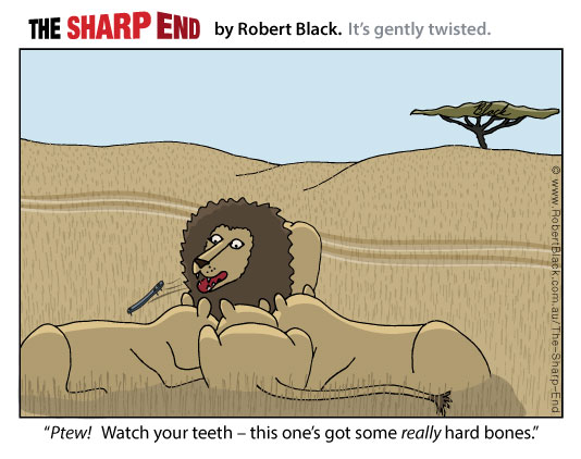 Caption: Ptew!   Watch your teeth – this one's got some really hard bones.