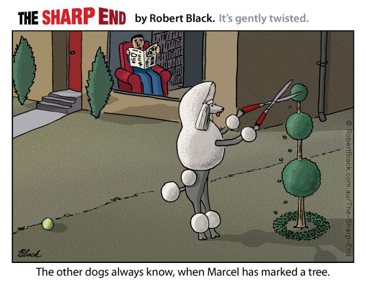 Caption: The other dogs always know when Marcel has marked a tree.